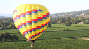Activities in the Napa Valley